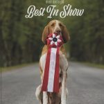 Hundutställning med sikte på best in show.